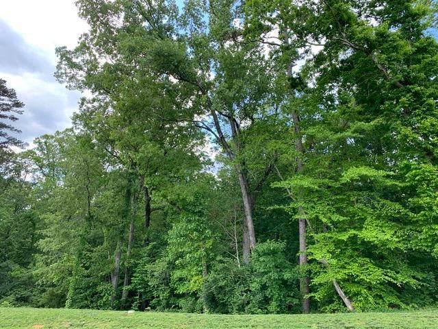 0 Arcadia Peninsula Way, Knoxville, TN 37922 (#1162353) :: Adam Wilson Realty