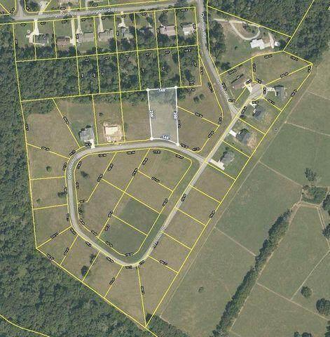 555 Overlook Drive, Dayton, TN 37321 (#1163511) :: Catrina Foster Group