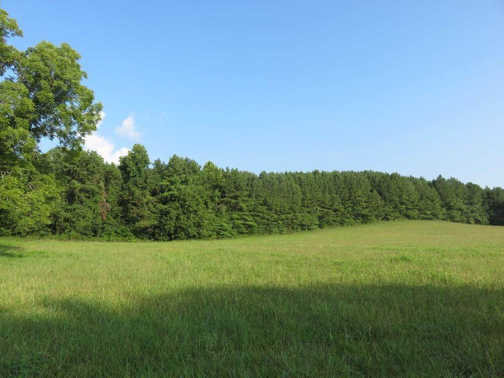 Lot 2 State Highway 58 N - Photo 1