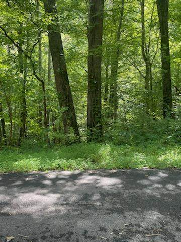 Lot 4 Lake Drive, Gatlinburg, TN 37738 (#1165297) :: Billy Houston Group