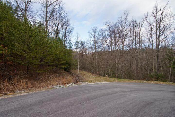 Jones Creek Lane - Photo 1