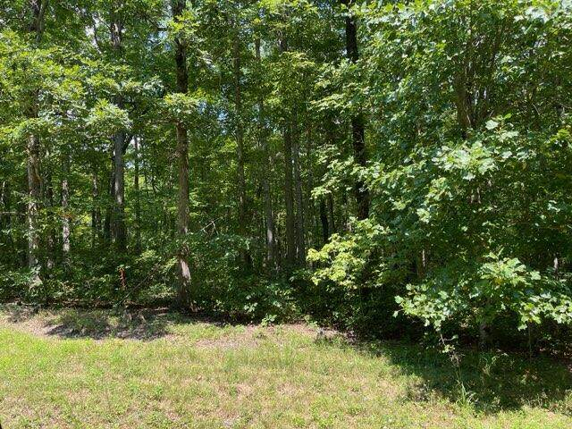 Cumberland Cove Road #9, Monterey, TN 38574 (#1165642) :: Shannon Foster Boline Group