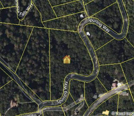 Spurling Way, Sevierville, TN 37862 (#1168073) :: Catrina Foster Group