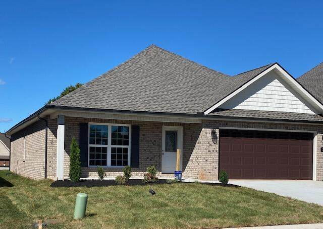 209 Sand Hills Drive, Maryville, TN 37801 (#1168547) :: Shannon Foster Boline Group