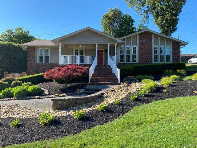 7321 Homestead Drive, Knoxville, TN 37918 (#1168624) :: A+ Team