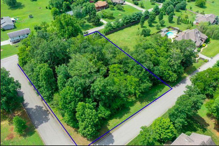 Lot 7 Davis Acres Drive - Photo 1