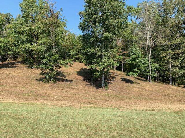 W Mountain Drive, Rockwood, TN 37854 (#1170212) :: Cindy Kraus Group | Engel & Völkers Knoxville