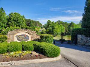 312 Caney View Drive, Harriman, TN 37748 (#1170850) :: Tennessee Elite Realty