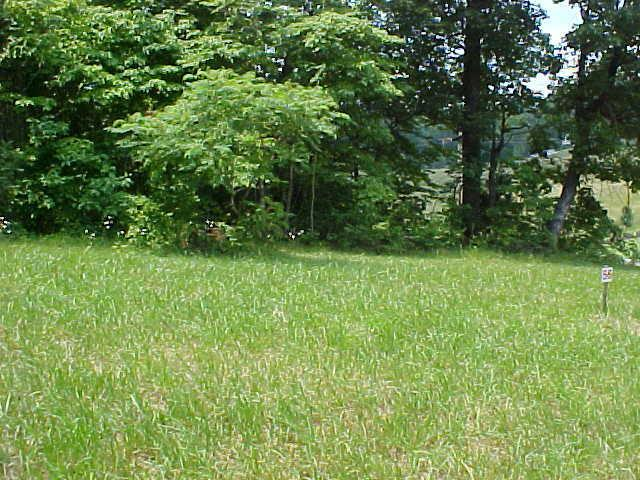 Lot 56 Cherokee Drive, Rutledge, TN 37861 (#885465) :: Cindy Kraus Group | Realty Executives Associates