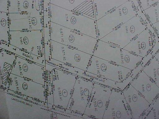 Lot 31 Chippewa Lane - Photo 1