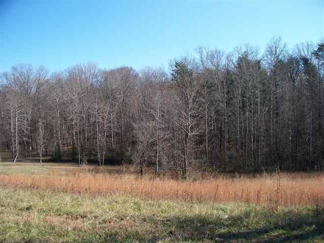 1800 Kings Hill Rd, Spring City, TN 37381 (#898687) :: Billy Houston Group