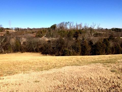 Lot 6 -Constitution Drive, Jefferson City, TN 37760 (#916499) :: Adam Wilson Realty