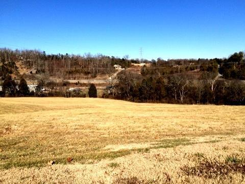 Lot 8- Constitution Dr., Jefferson City, TN 37760 (#916506) :: Billy Houston Group