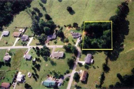 Scenic Circle, Madisonville, TN 37354 (#916781) :: Billy Houston Group