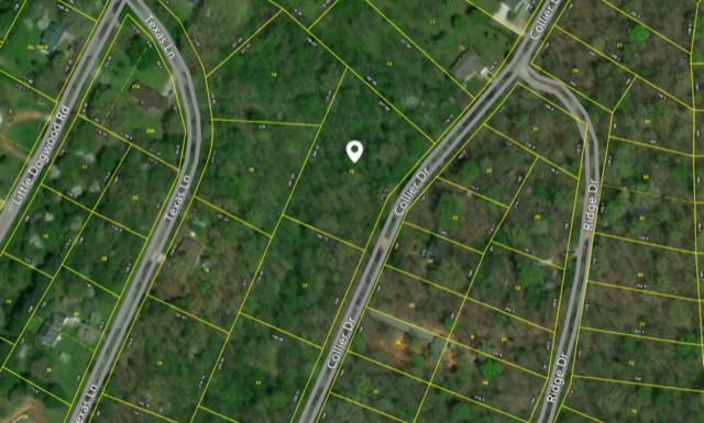 Collier Drive, Kingston, TN 37763 (#936985) :: Billy Houston Group