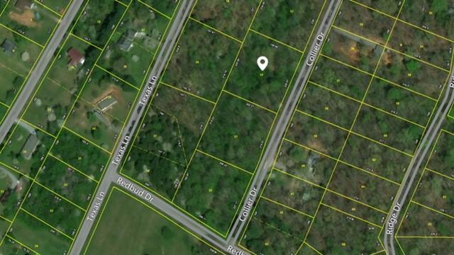 Collier Dr. Lot 19, Kingston, TN 37763 (#936993) :: Billy Houston Group