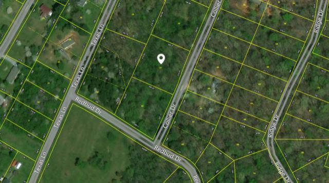 Collier Dr. Lot 21, Kingston, TN 37763 (#936994) :: Billy Houston Group