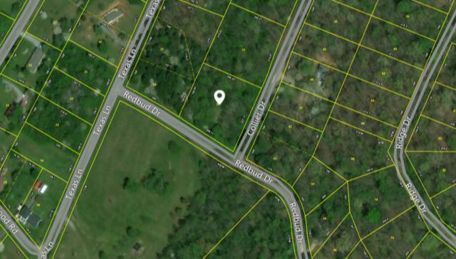 Collier Dr. Lot 22, Kingston, TN 37763 (#936995) :: The Cook Team