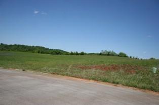 Rockwell Blvd, Madisonville, TN 37354 (#944031) :: Billy Houston Group