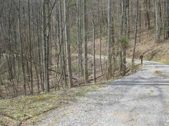 Hatcher Mountain Rd, Pigeon Forge, TN 37862 (#966544) :: Billy Houston Group