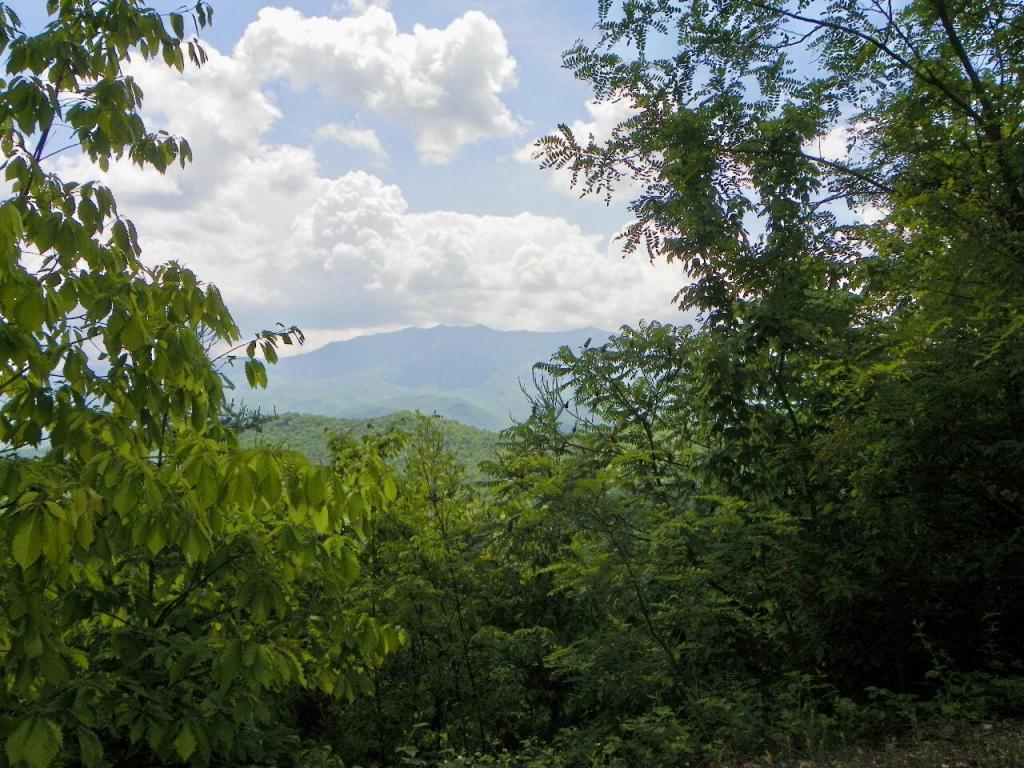 Cumberland Way - Photo 1