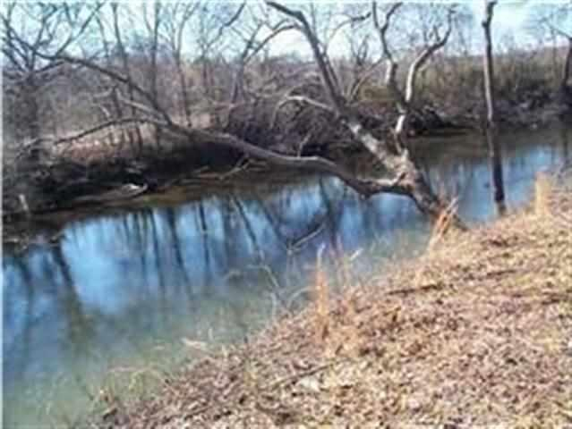 156 Tree Frog Lane, Benton, TN 37307 (#973334) :: Billy Houston Group