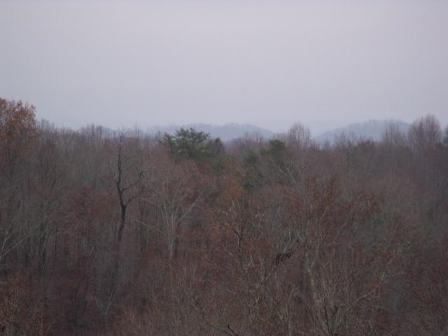 Cheoah Tr, Sweetwater, TN 37874 (#986343) :: Billy Houston Group