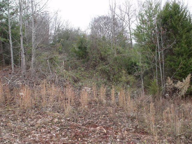 Cheoah Tr, Sweetwater, TN 37874 (#986345) :: Billy Houston Group
