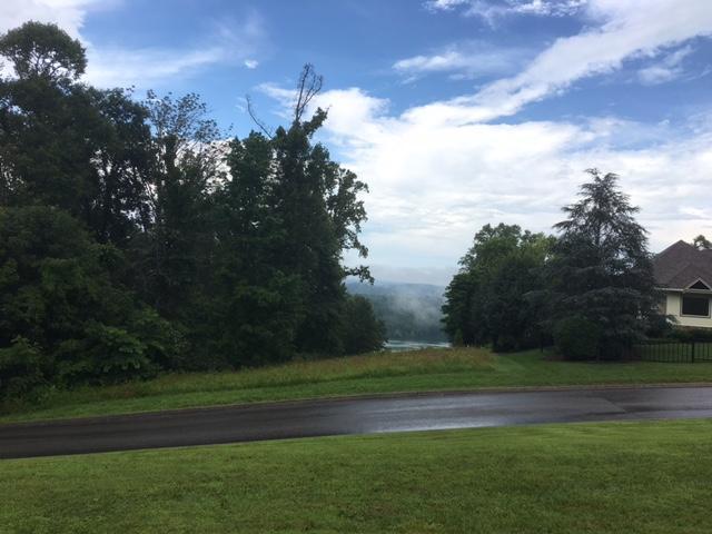 Regatta Drive, Andersonville, TN 37705 (#988590) :: Billy Houston Group
