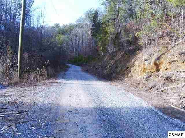 Rule Way, Sevierville, TN 37876 (#990981) :: Billy Houston Group