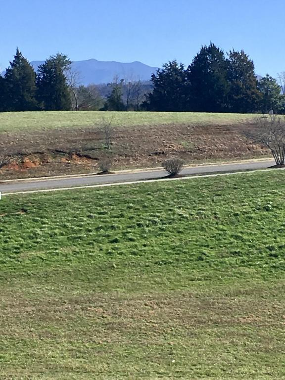 Lot 25 Park Place Ave, Sevierville, TN 37862 (#994695) :: The Terrell Team