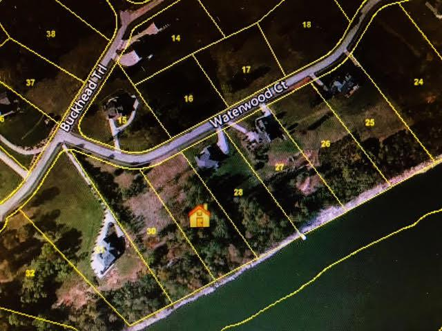 Lot 29 Waterwood Court, White Pine, TN 37890 (#995534) :: Billy Houston Group