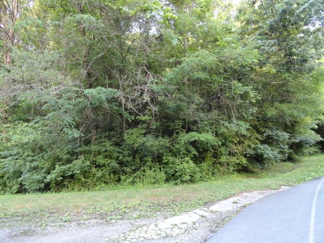 Melton Hill Drive, Clinton, TN 37716 (#995600) :: Billy Houston Group