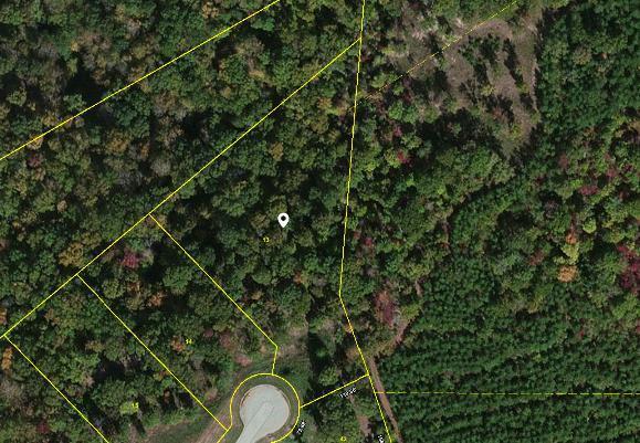 163 Highland Reserve Way, Kingston, TN 37763 (#1006422) :: Billy Houston Group