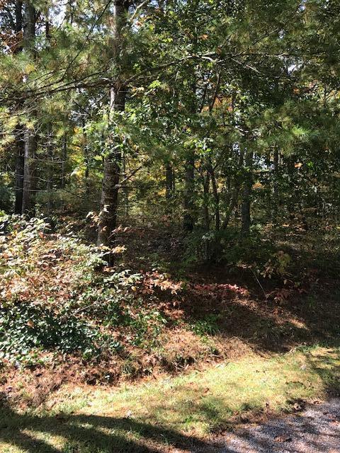 000 Herman Smith Rd, Pikeville, TN 37367 (#1020222) :: Billy Houston Group