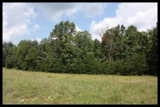 Perry Creek Drive, Crossville, TN 38572 (#1021821) :: Billy Houston Group