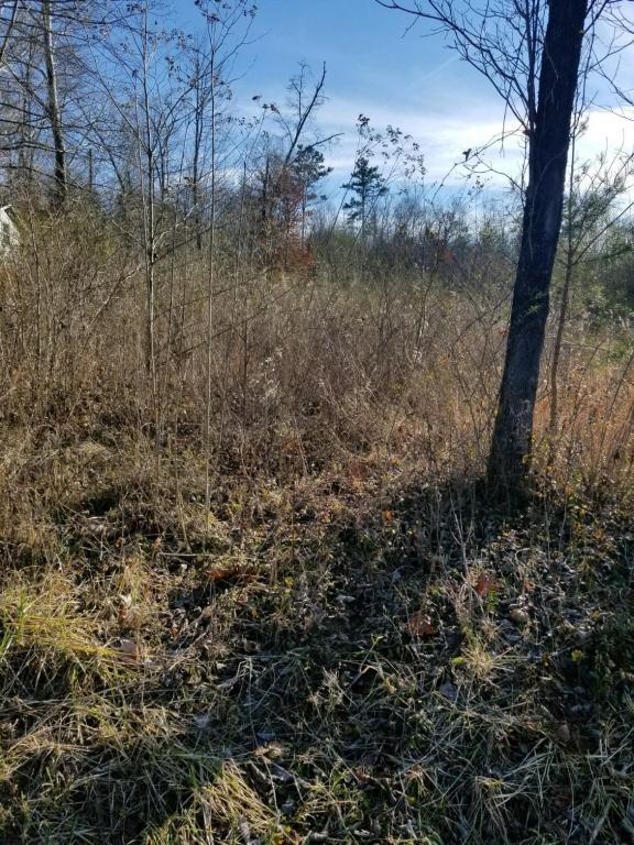 Lot 43 Scenic Lakeview Drive, Spring City, TN 37381 (#1027591) :: Shannon Foster Boline Group