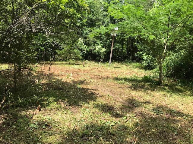 265 Eagle Point Drive, Rockwood, TN 37854 (#1033965) :: Billy Houston Group