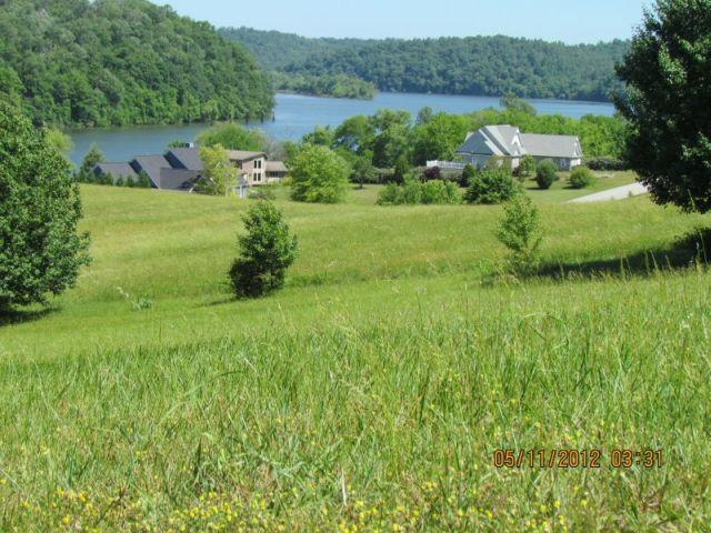 Marble View Drive, Kingston, TN 37763 (#1034721) :: Billy Houston Group