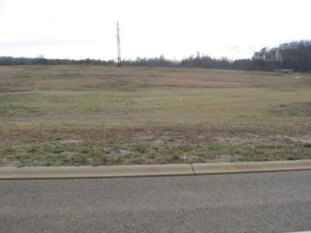 204 Ashton Lane, Madisonville, TN 37354 (#1035431) :: Shannon Foster Boline Group