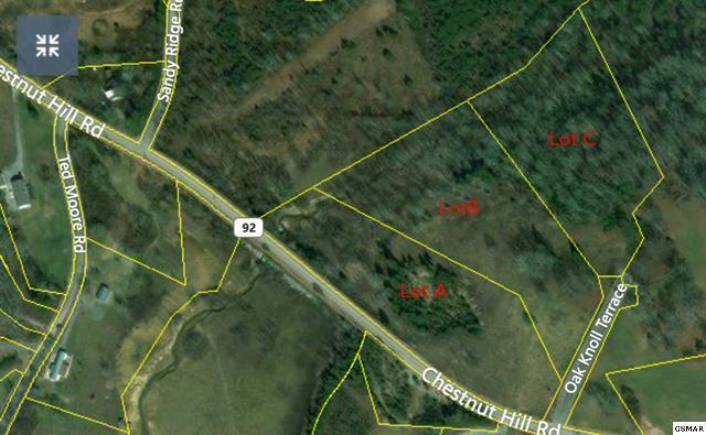 Lot 2 Chestnut Hill Rd, Dandridge, TN 37725 (#1035468) :: Billy Houston Group