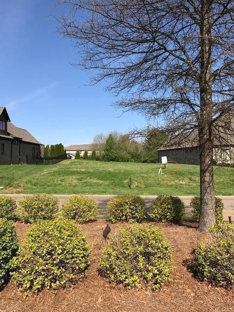 7235 Wellsley Manor Way, Knoxville, TN 37919 (#1036469) :: Billy Houston Group
