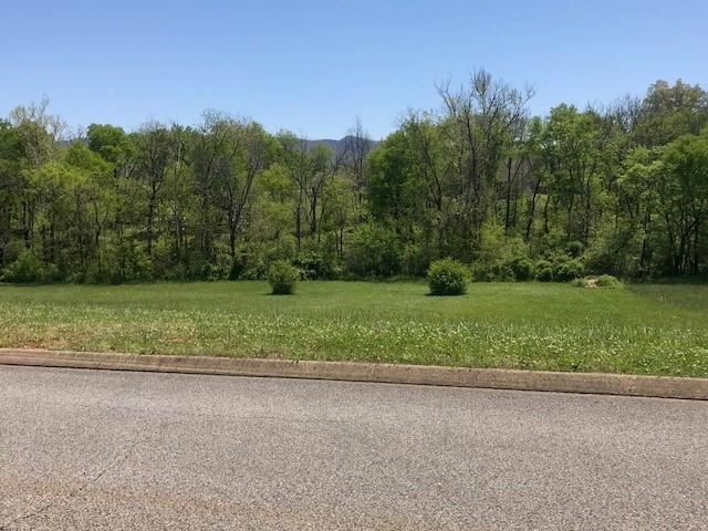 618 Winding Creek Way, Walland, TN 37886 (#1039903) :: Billy Houston Group