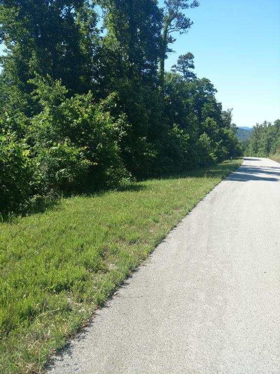 Lot 548 Marble Point Way, New Tazewell, TN 37825 (#1043480) :: Shannon Foster Boline Group