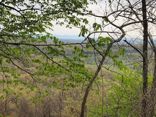 Renegade Mountain Pkwy, Crab Orchard, TN 37723 (#1048523) :: Billy Houston Group