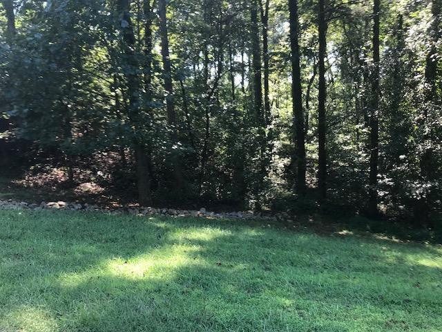 318 Eagle Ridge   Lot 541, Drive, Rockwood, TN 37854 (#1054638) :: Billy Houston Group