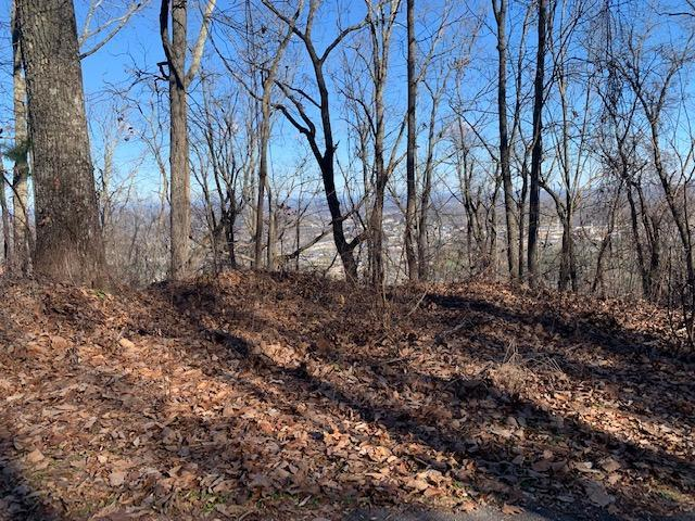 Lot 47 Twin City Way, Pigeon Forge, TN 37863 (#1067448) :: Realty Executives