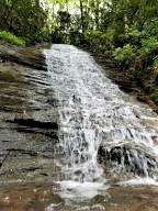 1760 Carrs Creek Rd, Townsend, TN 37882 (#1077448) :: CENTURY 21 Legacy