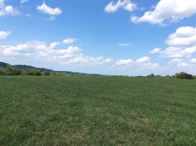 Dry Valley Rd, Loudon, TN 37774 (#1088236) :: Venture Real Estate Services, Inc.