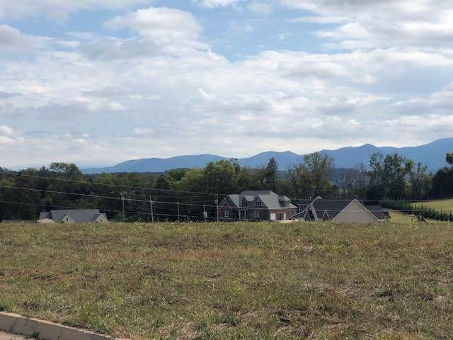 Mountain Vista Trail, Dandridge, TN 37725 (#1088588) :: Realty Executives Associates Main Street